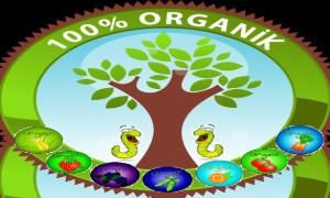 Organik Altın'ın Hikayesi, Vermikompost Üzerine Bir İnceleme