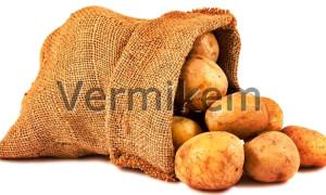 Solucan Humusu ve Patates