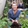 Usta Vermikompostçu ve Su Bilgesi Shelley Grossman ile Röportaj