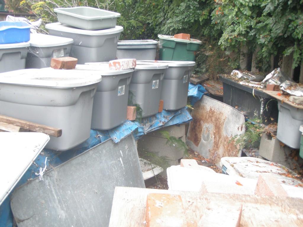 Many bins 2010-07-09